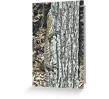Camouflage! Greeting Card