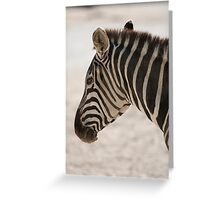 zebra at the zoo Greeting Card