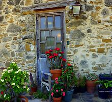 Rustic Door by Charmiene Maxwell-Batten