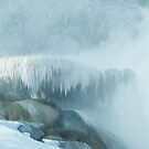 Mammoth Hot Springs by Linda Sparks