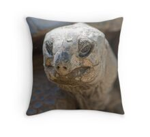 tortoise at zoo Throw Pillow