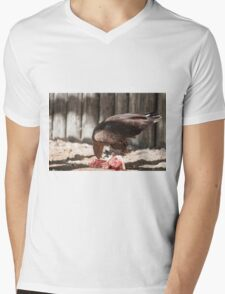 bird of prey that eat meat Mens V-Neck T-Shirt
