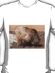 bear in the zoo T-Shirt