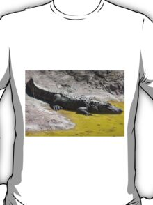 crocodile at the zoo T-Shirt