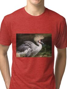 hoopoe on the farm Tri-blend T-Shirt
