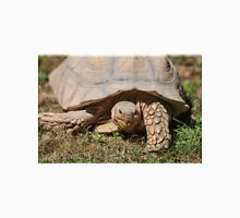 tortoise at zoo Unisex T-Shirt