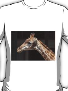 giraffe at the zoo T-Shirt