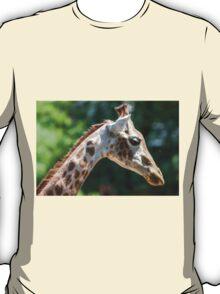 giraffe at the zoo T-Shirt