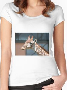 giraffe at the zoo Women's Fitted Scoop T-Shirt