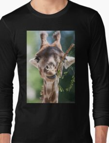 giraffe at the zoo Long Sleeve T-Shirt