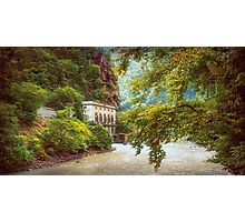 Valley of Trees Photographic Print