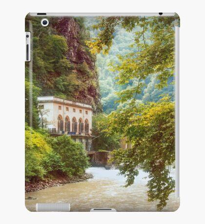 Valley of Trees iPad Case/Skin