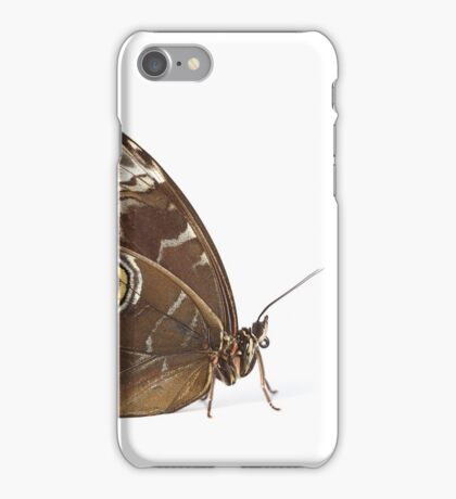 Owl Eye Butterfly Macro iPhone Case/Skin