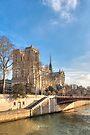 Notre Dame de Paris sur la Seine by Mark Tisdale