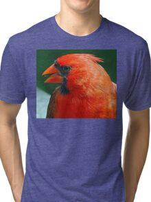 Happy Boy Tri-blend T-Shirt