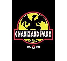 Charizard Park Photographic Print