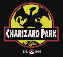 Charizard Park Kids Clothes