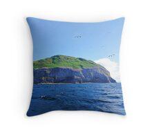 Ailsa Craig West Coast. Firth of Clyde, Scotland. Throw Pillow
