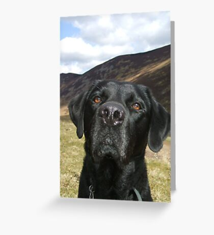 patient pal Greeting Card