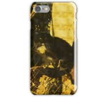 14 1447 0 watercolor iPhone Case/Skin
