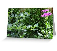 Pink Flower I Greeting Card