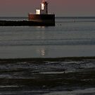 Bug Light, Bunker's Island Lighthouse by Harv Churchill