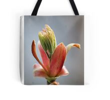 Budding Maple - Memories of Spring Tote Bag