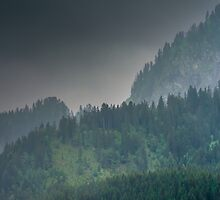 The Wooded Slopes Above by metriognome