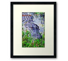 Crocodile Framed Print