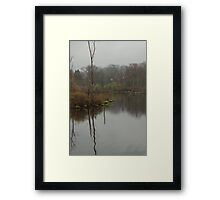 New England Swamp Framed Print