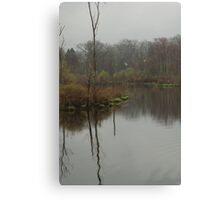New England Swamp Canvas Print