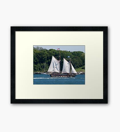 Tall Ship Sailing Past Newport, RI Framed Print