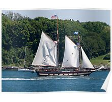 Tall Ship Sailing Past Newport, RI Poster