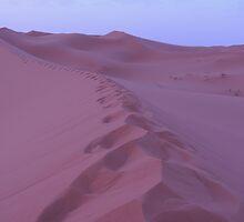 Sahara desert at Morocco by Panayiotis Zavros