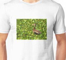 Black-bellied Whistling-Duck Unisex T-Shirt