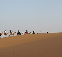 Caravan at Sahara desert. by Panayiotis Zavros