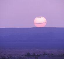 Sunup at Sahara desert by Panayiotis Zavros