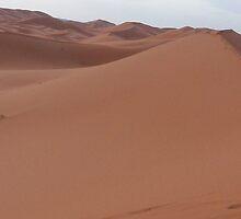 Sahara desert by Panayiotis Zavros
