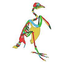 Aztecan Pigeon Skeleton Photographic Print