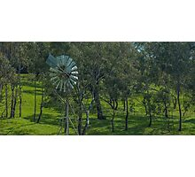 rural australia Photographic Print