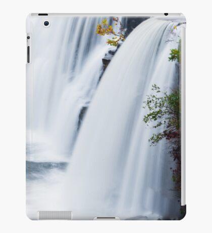 Blue Serenity iPad Case/Skin