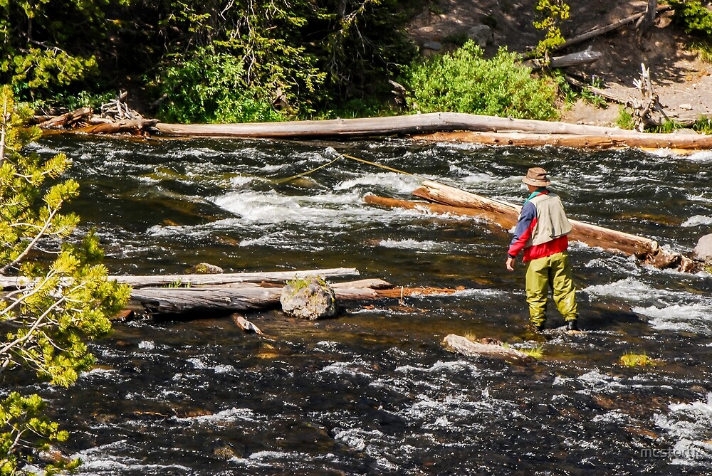 Fly Fishing In Yellowstone - 2 by Mary Carol Story