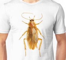 Cockroach on white Background  Unisex T-Shirt