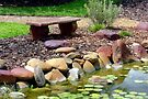 A Seat By the Pond by AuntDot