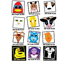 DON'T BLAME Animals POSTER Photographic Print