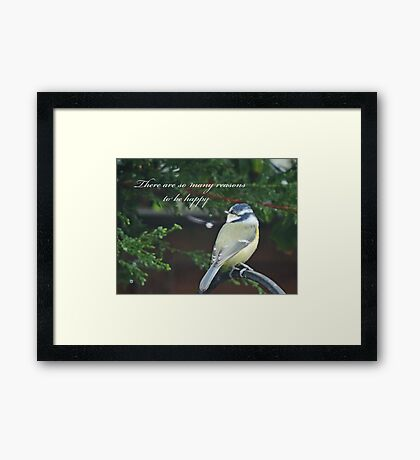 Reasons To Be Happy (Blue Tit)  Framed Print