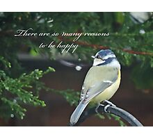 Reasons To Be Happy (Blue Tit)  Photographic Print