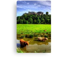 Keeping cool at the Castle Canvas Print