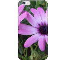 Morning flower  iPhone Case/Skin