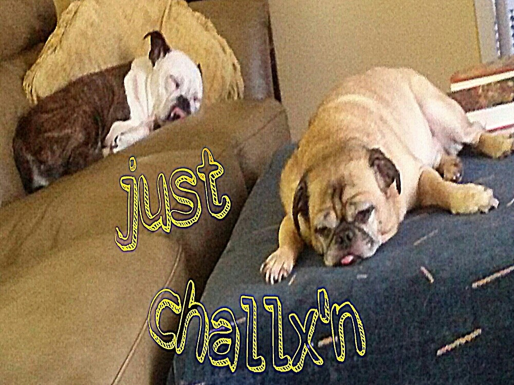 Chillax'n @ Gram-paws by WhiteDove Studio kj gordon